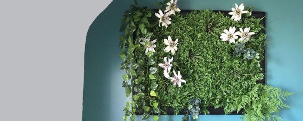 Cadre vegetal stabilise